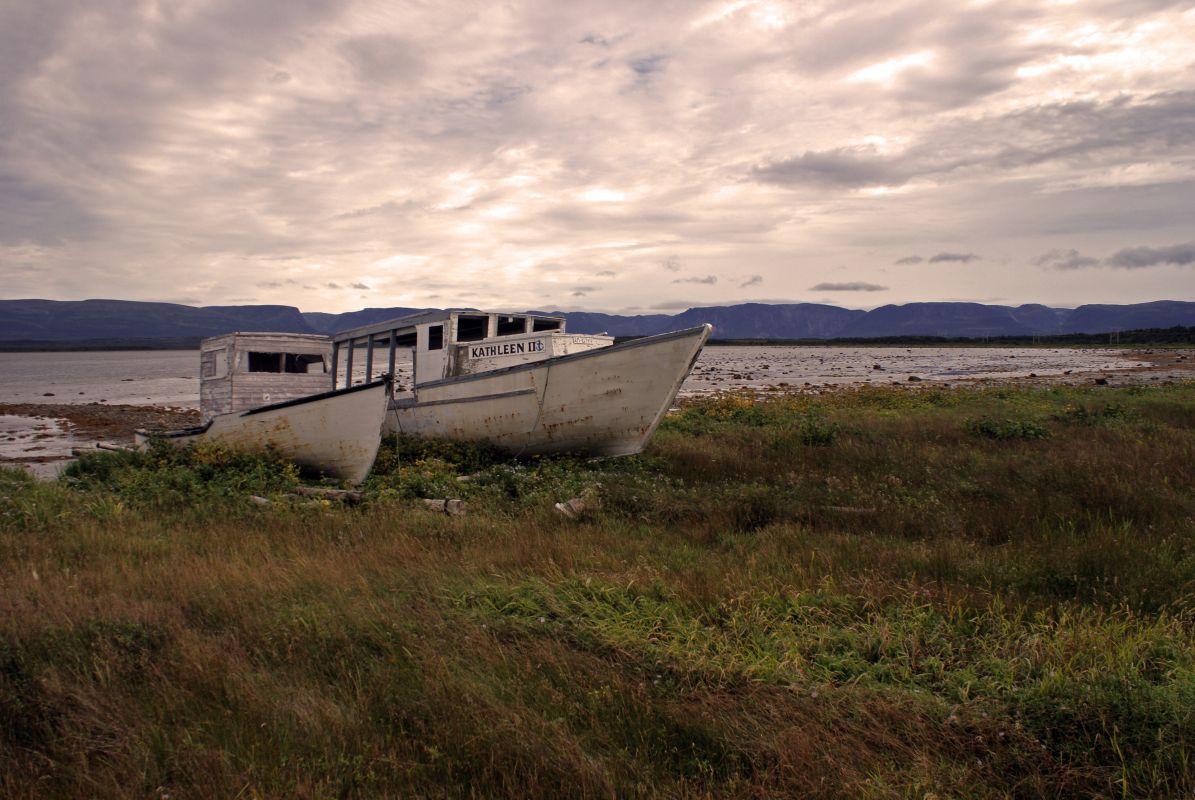 Newfoundland Boats