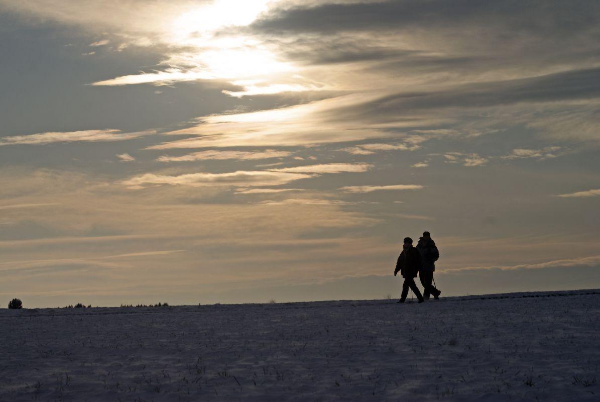 Winter Wandering
