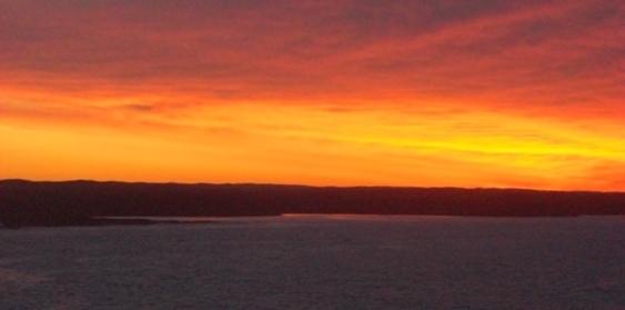Newfoundland Horizon